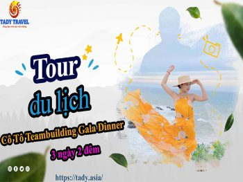 tour-du-lich-co-to-teambuilding-gala-dinner-3-ngay-2-dem9