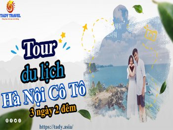 tour-du-lich-ha-noi-co-to-3-ngay-2-dem8