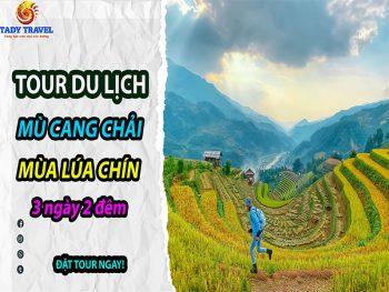 tour-du-lich-mu-cang-chai-mua-lua-chin-3-ngay-2-dem